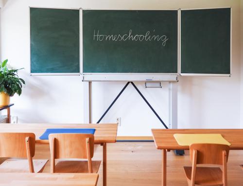 Grenzen des Homeschoolings